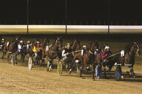 Terang-harness-racing.jpg