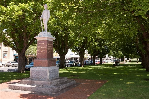 Camperdown-Memorial-and-Avenue-of-Elms.jpg